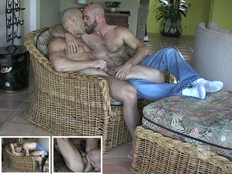 Gay Bears Hairy : A like story of TWO hairy guys!